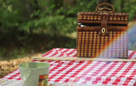 Zó organiseer je een onvergetelijke picknick voor het hele gezin: 5 tips